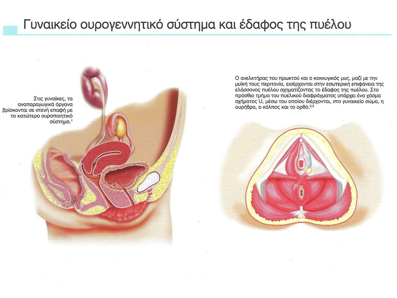 Χειρουργός Ουρολόγος Ανδρολόγος
